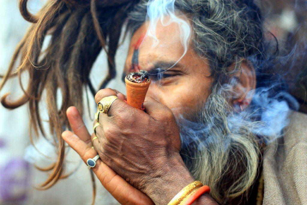 Image result for india marijuana