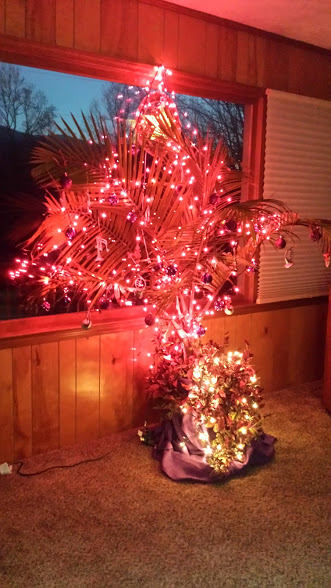 Americans Love Christmas Trees. We See Them Everywhere Now That  Thanksgiving Is Over U2013 On Cars, In Homes, Yards, Stores, Offices And  Lobbies.