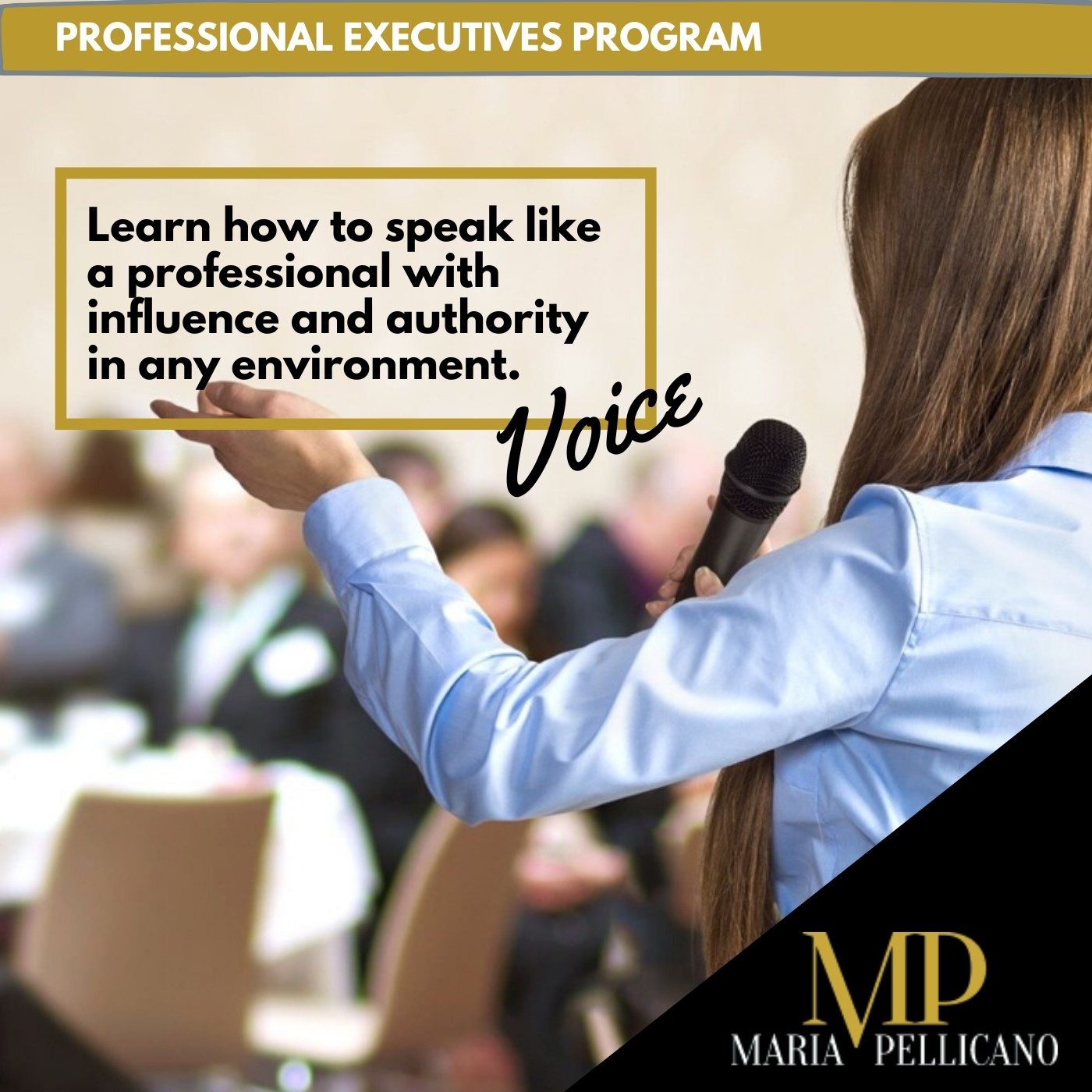 Learn how to speak like a profesional with influence and authority in any environment