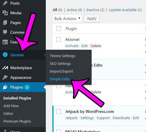 open the genesis simple edits plugin