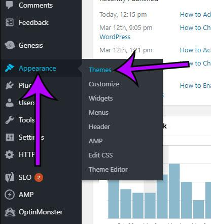 open wordpress themes menu