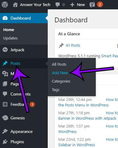 how customize wordpress post editor