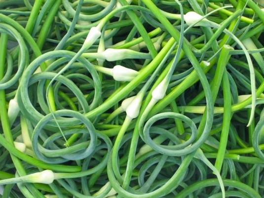 paleo diet challenge day 27 garlic scapes