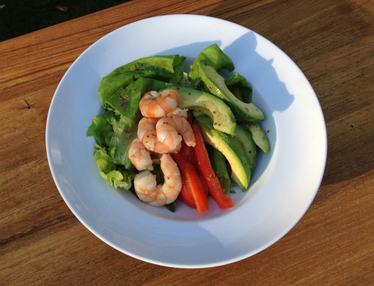 prawn avocado salad paleo diet challenge top 5 positives
