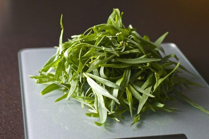 Tarragon Pesto Tarragon Leaves On Scale