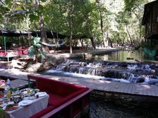 Ulupınar Tropik Restoran (5)