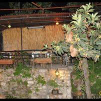 Plaklı Meyhane- Haydar Erkan (10)