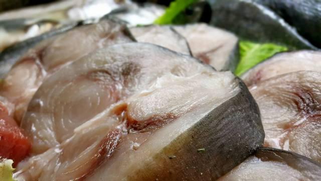 Ekici Restaurant - 0242 2484142 antalya kaleiçi yat limanı mekanlar restaurant bar balık evi (10)