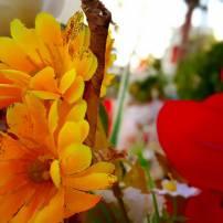 antalya çiçek sipariş 0242 3453210 çiçek gönderme orgil çiçekçilik (15)