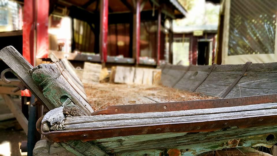 Antalya Köy Kahvaltısı – 0242 4394747 – Çakırlar Gzöleme Bazlama Paşa Kır Bahçesi Çakirlar (15)