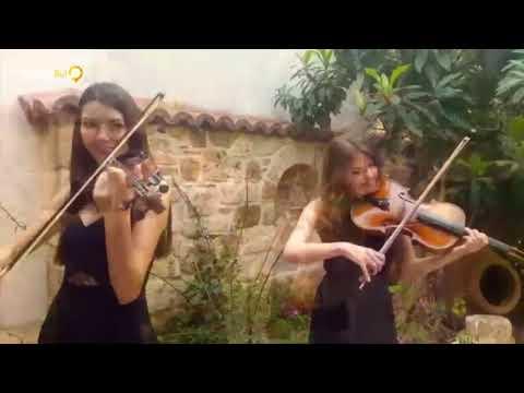 Müzisyenbul Organizasyon - Quartet/Trio - Antalya - MBO385390