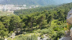 Altınyaka Yolundan Antalya Manzarası