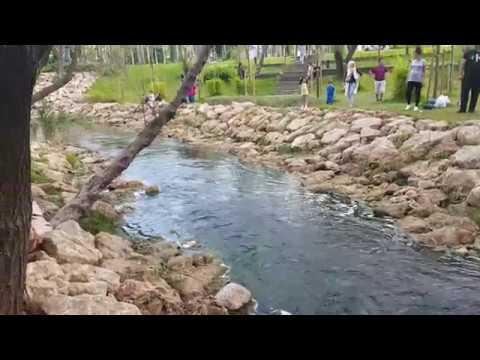 Boğaçayında dere manzarası harika – Antalya Konyaaltı Gezi Tatil Tur