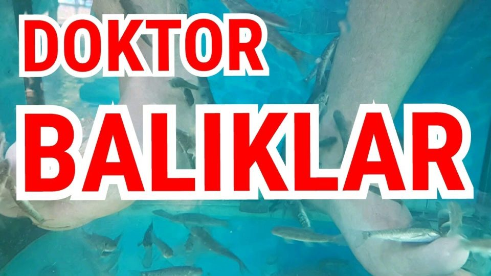 Doktor Balıklar – Balıklarla Tedavi Alanya Dimçayı Cennet Vadisi Piknik