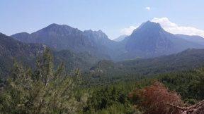 Altınyaka yolunda çam ormanı manzarası harika - Antalya Gezi Tatil