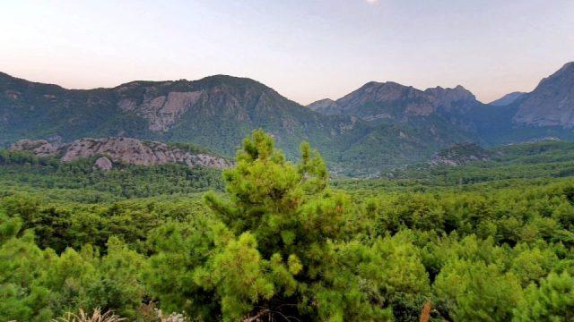 Antalya Altınyaka Deniz Manzarası Çam Ormanları_28