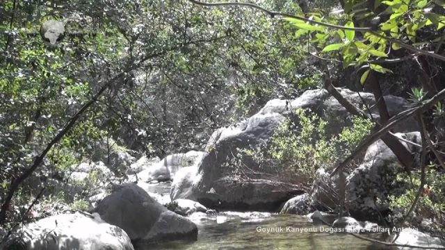 Antalya Kemer Göynük Kanyonu Nerededir? Göynük kanyonuna nasıl gidilir ?