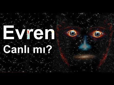Evren canlı olabilir mi ? Cansızlar büyük bir canlının parçaları mı ?
