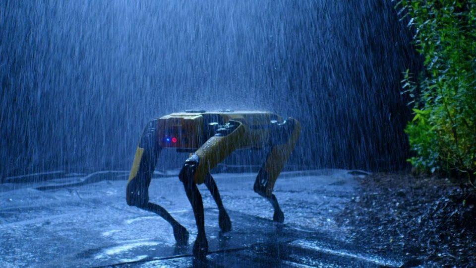 Robot köpeğin marifetleri – Olmaz denen şeyler bir bir oluyor