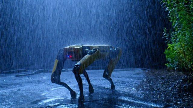 Robot köpeğin marifetleri - Olmaz denen şeyler bir bir oluyor