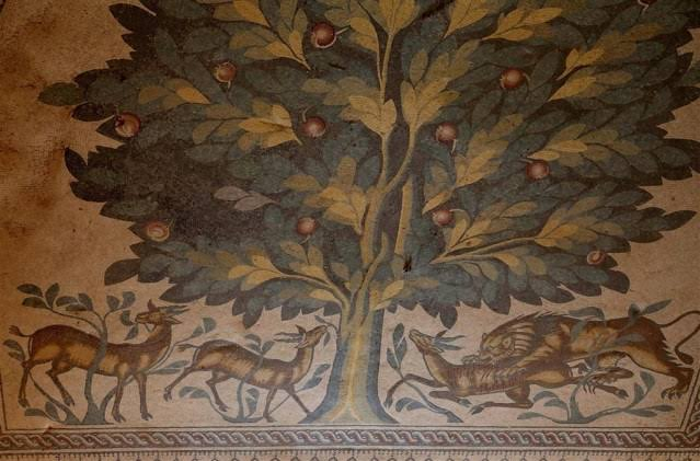 mana okudum ali aksoy şiir hayat ağacı