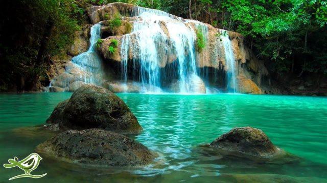 Su Sesleri ile Rahatlatıcı Zen Müziği • Spa, Yoga ve Rahatlamak için Huzurlu bir Ambiyans
