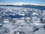 Sea Ice: