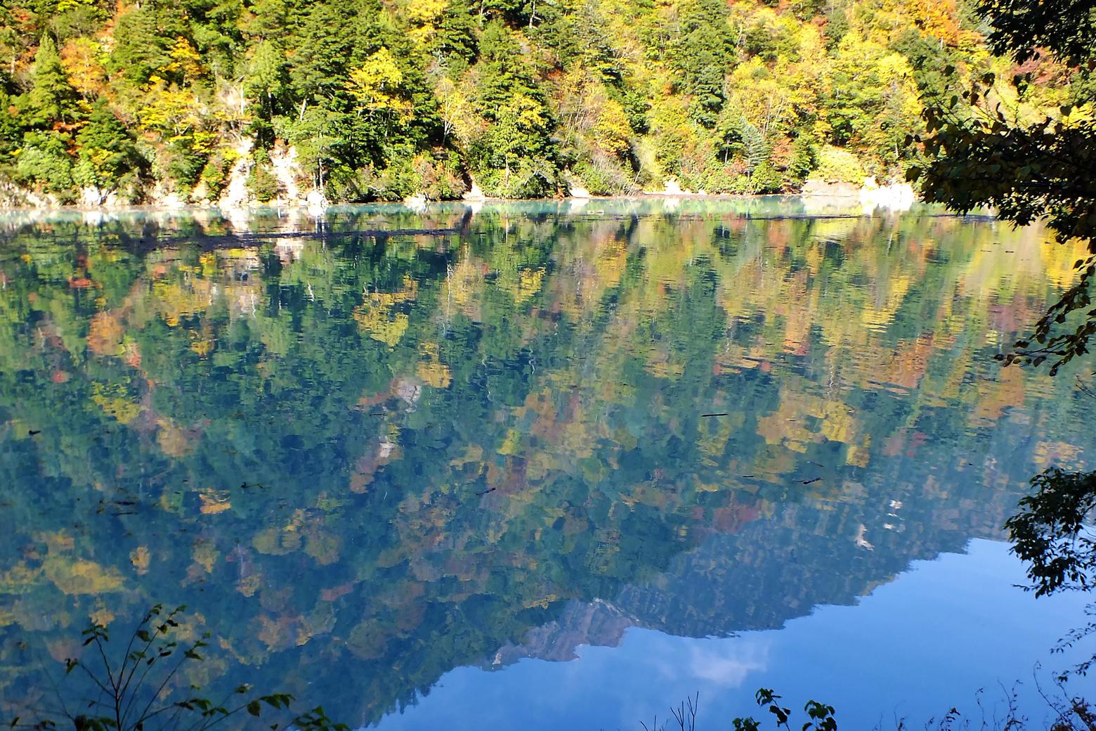 湖面に映る紅葉