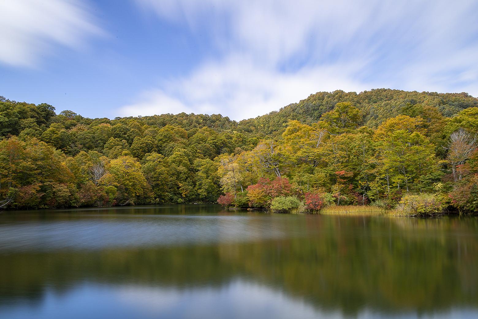 鎌池の周囲の色とりどり紅葉