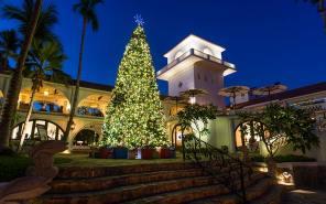 One_Only Palmilla Festive Season Tree