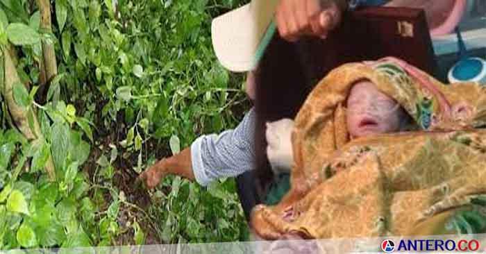 Bayi Baru Lahir Ditemukan Warga Baros Tergeletak di Semak-semak