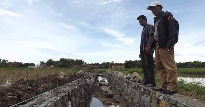 Rehabilitasi Jaringan Irigasi P3-TGAI Menjadi Solusi Petani Desa Priyayi