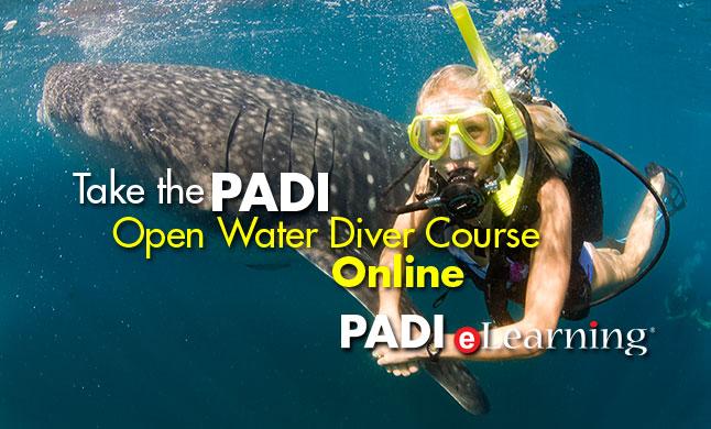 Open Water Online Training