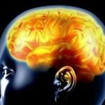 Ανακαλύφθηκε η περιοχή του εγκεφάλου για την ενδοσκόπηση και το στοχασμό