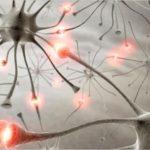 Πώς να διατηρείται νέο τον εγκέφαλο σας