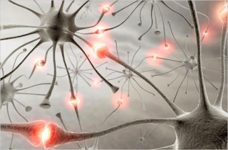 brain_net