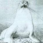Ζεράρ ντε Νερβάλ: Ιστορία μιας φώκιας