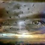Μάρω Βαμβουνάκη: Ο θάνατος είναι πολλών ειδών