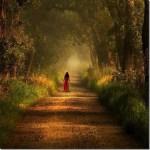 9 τρόποι με τους οποίους οι αρνητικοί – τοξικοί άνθρωποι θα σας βλάψουν, γι' αυτό μείνετε μακριά τους