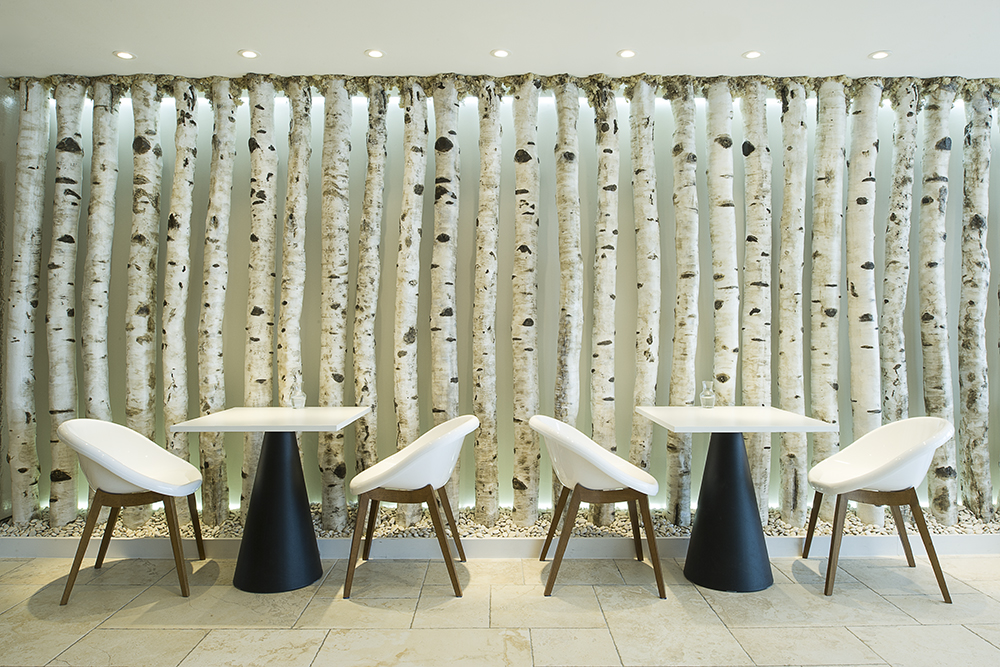 Headland Spa, designer tables and chairs in front of a Silver Birch wall
