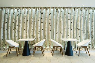 restaurant of the Headland Spa, designer tables and chairs in front of a Silver Birch wall
