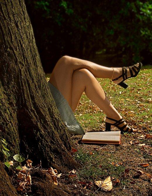 The Reader Again