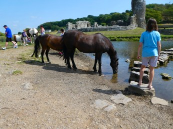 Ogmore Stepping Stones and Ponies