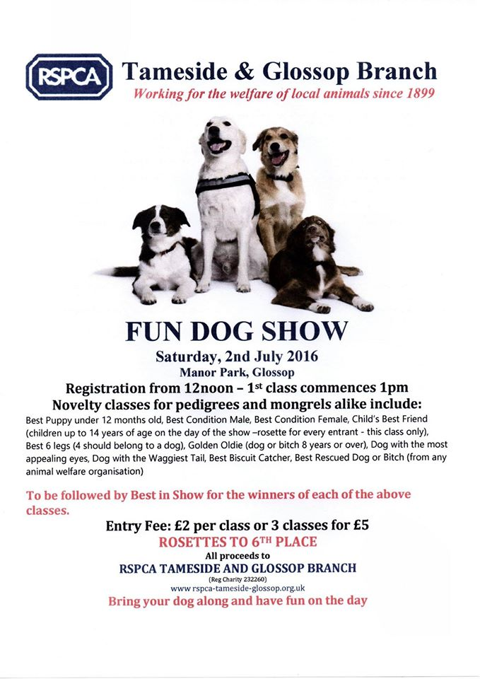 Dog Show Poster 2016