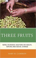 On the cusp of 'modernity': Ayurveda's tryst with 'development' in Nepal
