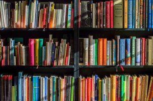 Bookshelf with multicolored books