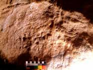 Mammoth engraving found in Cheddar Caves