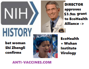 bat-woman-Shi-Zhengli-confirms-Fauci-involvement-gain-of-function-research-eco-health-alliance-peter-daszak-niaids-NIH-million-dollars-funding-bat-coronaviruses