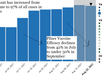 delta,variant,pfizer,vaccine,efficacy,down,up,increases,decreases,declines,change,fully,vaccinated,unvaccinated,options