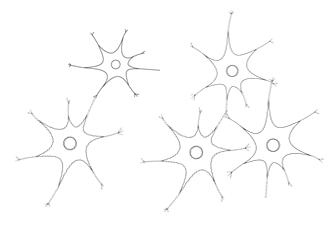 細胞ネットワークのイメージ図